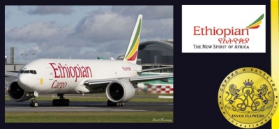 Ethiopian Airlines (ETHIOPIAN AIRLINES) - another alternative to send flowers in bulk!